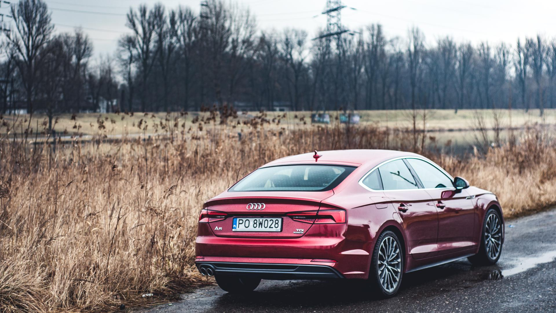 Fantastyczny Audi A5 Sportback 2.0 TDI 190 KM - ostrożne zmiany • AutoCentrum.pl DC86