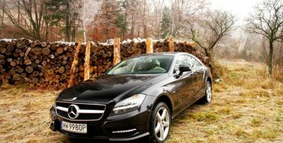 Mercedes CLS W218 Coupe 350 BlueEFFICIENCY 306KM 225kW 2011-2014