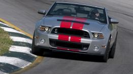 Ford Mustang V Cabrio 5.0 GT 418KM 307kW 2011-2014