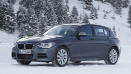 BMW Seria 1 F20-F21 Hatchback 5d 116d EfficientDynamics 116KM 85kW 2012-2015