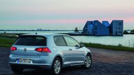 Volkswagen Golf VII TDI BlueMotion (2013) - widok z tyłu
