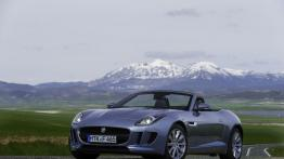 Jaguar F-Type V6 Satellite Grey (2013)