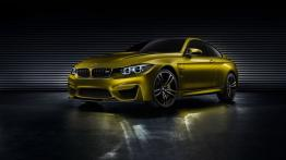 BMW Concept M4 Coupe (2013)
