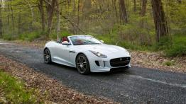 Jaguar F-Type AWD R Roadster (2016)