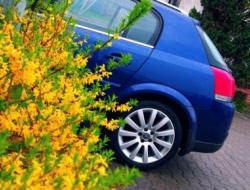 Opel Signum 19 Cdti Wymiana Lampy Blog Auta
